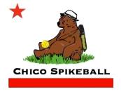 spikeball3