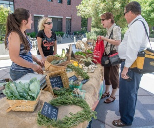 Elisabeth Quick and Kim Tracy assist Paula Woods and Charles Barnes (left to right) at the Organic Vegetable Project (OVP) weekly market, which includes squash, tomatoes, lettuce mix, and herbs, across from the library near the Student Services Center.